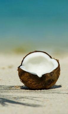 Aceite de Coco Orgánico para Adelgazar