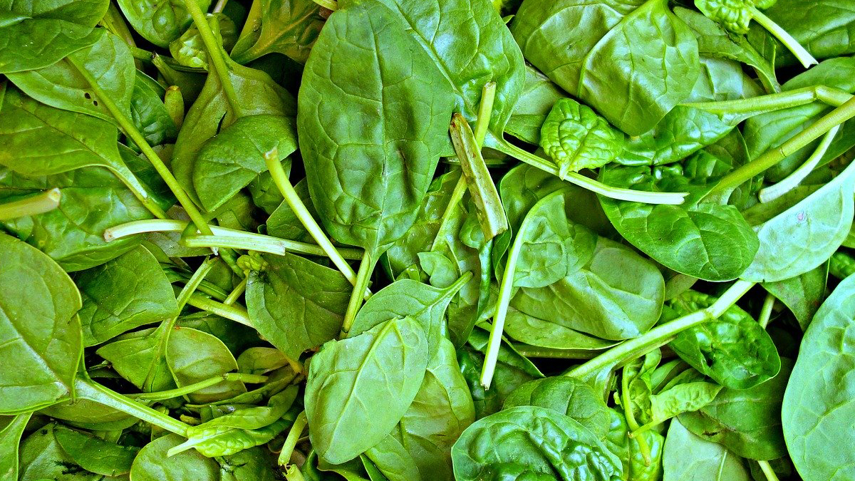 alimentos anticancer espinacas