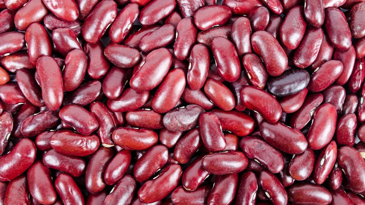 alimentos anticancer legumbre